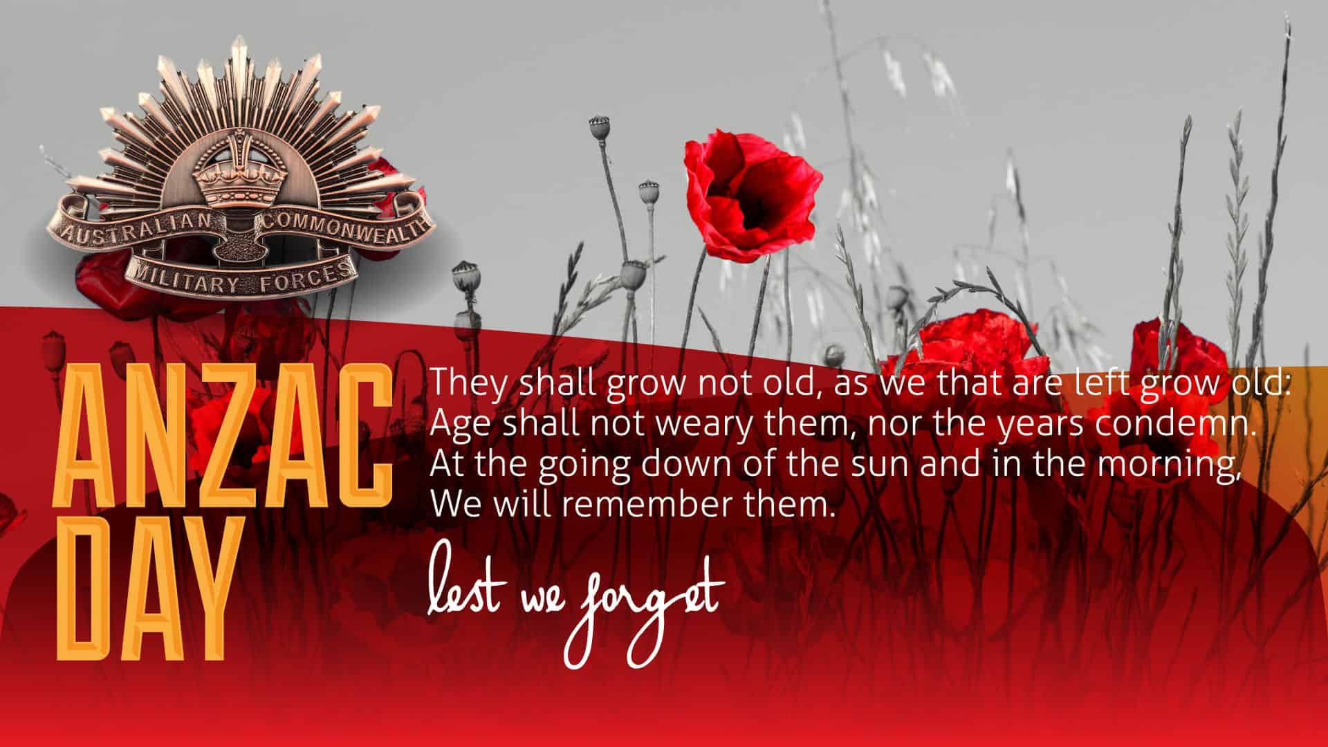 Image result for ANZAC Image